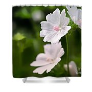 Oh So Pretty Musk Mallow Shower Curtain