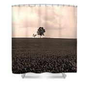 Ohio Fields  Shower Curtain