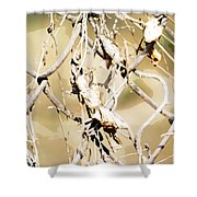 Oil Painting - A Cross Link Fence Shower Curtain