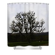 Oil Painting - An Old Tree In The Middle Of A Garden And Playground Shower Curtain