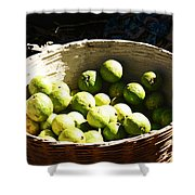 Oil Painting - Based Full Of Guavas Shower Curtain