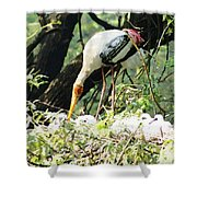 Oil Painting - Mama Stork Feeding Young Shower Curtain