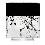 Oil Painting - Small Plant Branches Falling Over A Ledge - Horizontal Shower Curtain