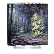 Oil Painting - Forest Light Shower Curtain