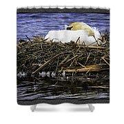 Oil Painting Nesting Swan Michigan Shower Curtain