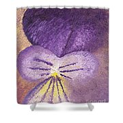 Oil Painting Of Pansy - Viola Tricolor Shower Curtain