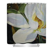 Oil Painting - Sydney's Magnolia Shower Curtain