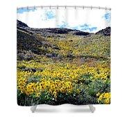 Okanagan Valley Sunflowers 1 Shower Curtain