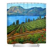 Okanagan Vineyard Shower Curtain