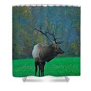 Okonoluftee Elk Shower Curtain