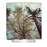 Old And Naked Shower Curtain