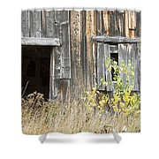 Old Barn In Fall Maine Shower Curtain