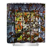 Old Barn Window Vines Shower Curtain