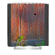 Old Barn Wood Shower Curtain