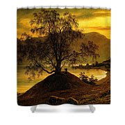 Old Birch Tree At The Sognefjord Shower Curtain