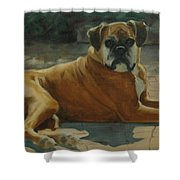 Old Boxer Shower Curtain