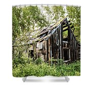 Old Building - Liberty Washington Shower Curtain