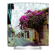 Old Cartagena 2 Shower Curtain
