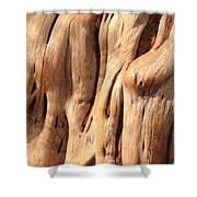 Old Cedar Shower Curtain