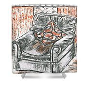 Old Cozy Chair Shower Curtain