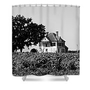 Old Farmhouse Surrounded By Cotton Shower Curtain