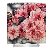 Old Fashion Azalea Shower Curtain