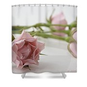 Old Fashioned Shower Curtain