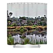 Old Florida Waterway Shower Curtain