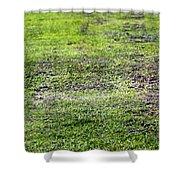 Old Green Grass Shower Curtain
