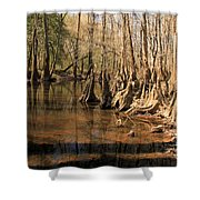 Old Growth Shower Curtain