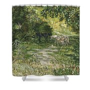 Old Horses Shower Curtain