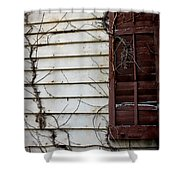 Old House Red Shutter 4 Shower Curtain