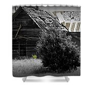 Old Kansas Homestead II Shower Curtain