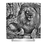 Old King In Black And White Shower Curtain