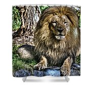 Old King Lion Shower Curtain