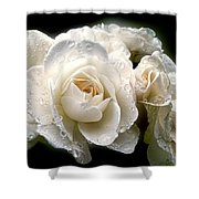 Old Lace Rose Bouquet Shower Curtain