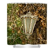 Old Lamp Hanging On Tree  Shower Curtain