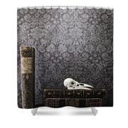 Old Library Shower Curtain