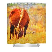Old Mare Shower Curtain