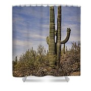 Old Married Couple Shower Curtain