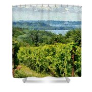 Old Mission Peninsula Vineyard Shower Curtain