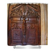 Old Ornamented Door Shower Curtain