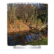 Old Park Canal In Autumn Shower Curtain