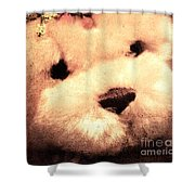 Old Photo Bear Shower Curtain