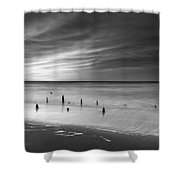 Old Piling Bw Shower Curtain