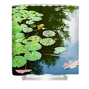 Old Pond - Featured 3 Shower Curtain