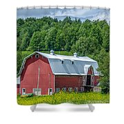Old Red 3623c Shower Curtain