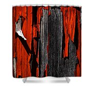 Old Red Barn Two 2 Shower Curtain