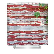 Old Red Barn With Peeling Paint And Vines Shower Curtain
