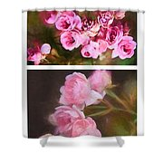 Old Roses Vertical Shower Curtain